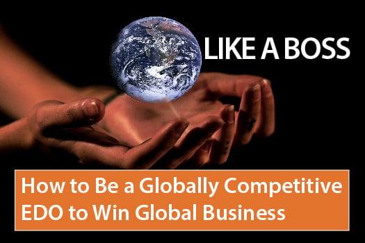 Globally Competitive EDO E-book image